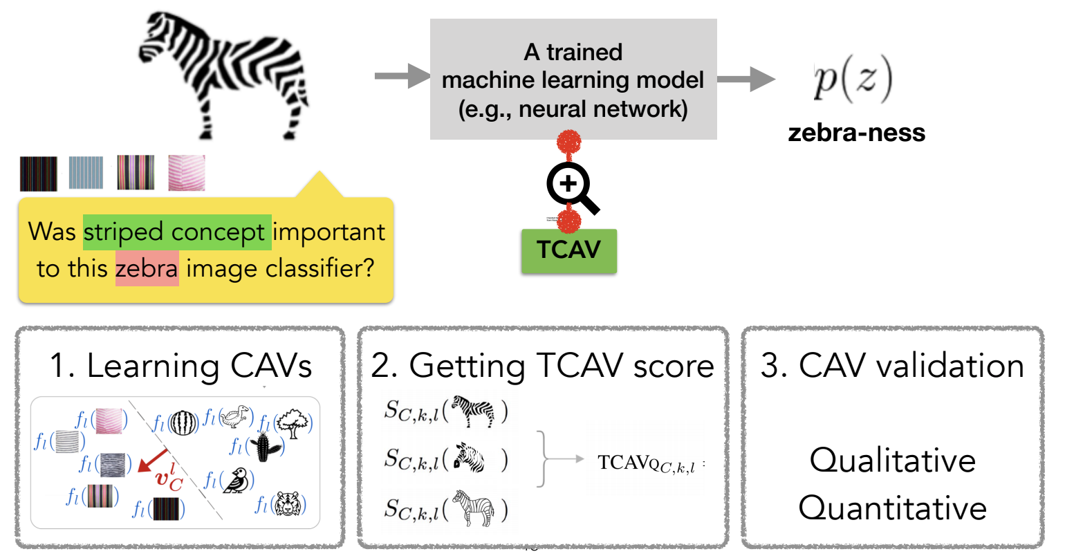 Testing with concept activation vectors