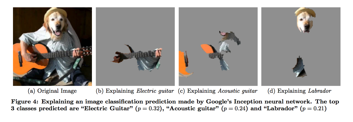 This figure illustrates a local explanation of Google's Inception neural network on some arbitrary image.