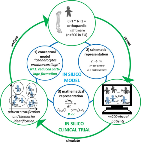 In Silico clinical trials for pediatric orphan diseases