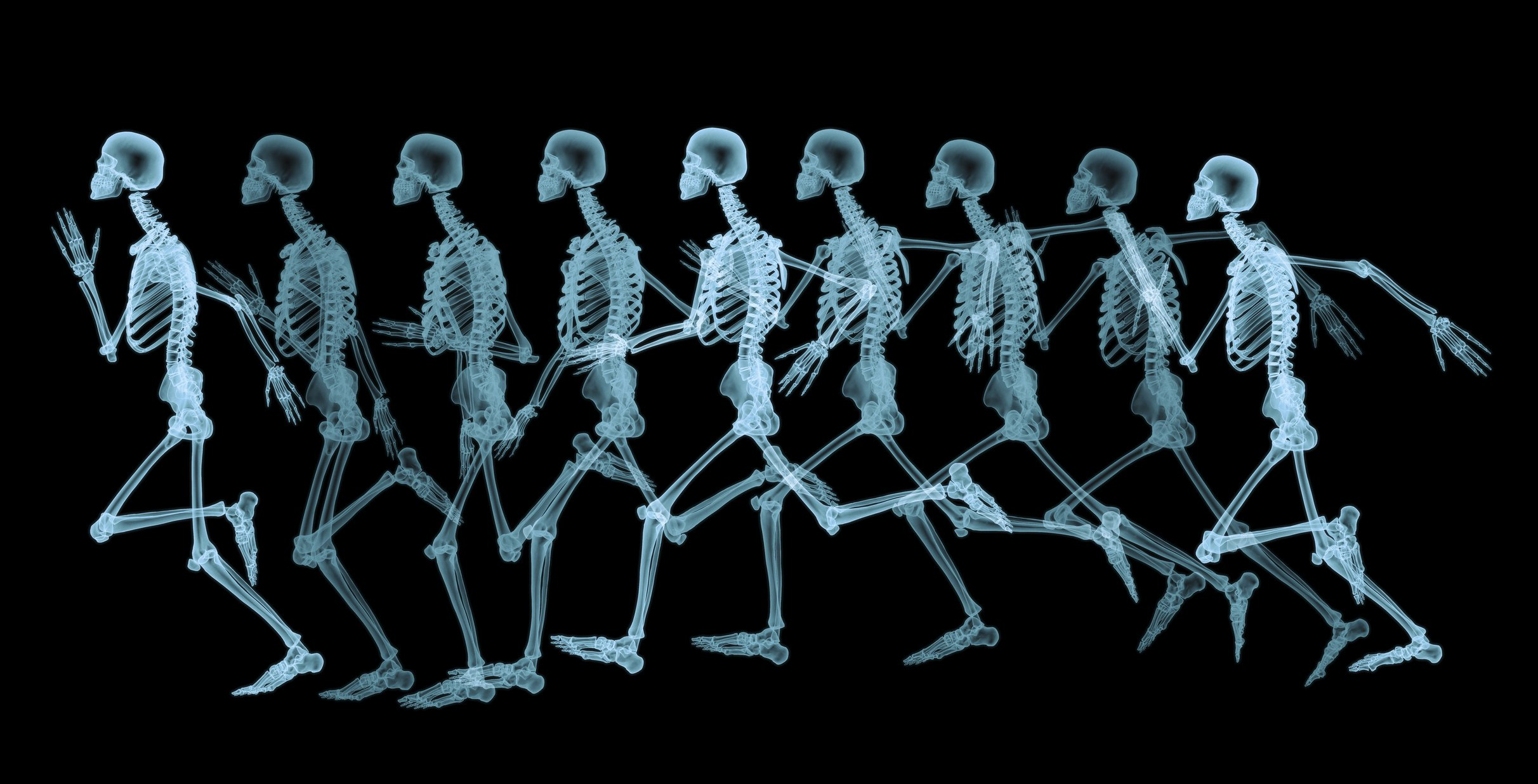 Does the Key To Anti-Ageing Lie in Our Bones?